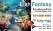 fish-fantasy-bus-card